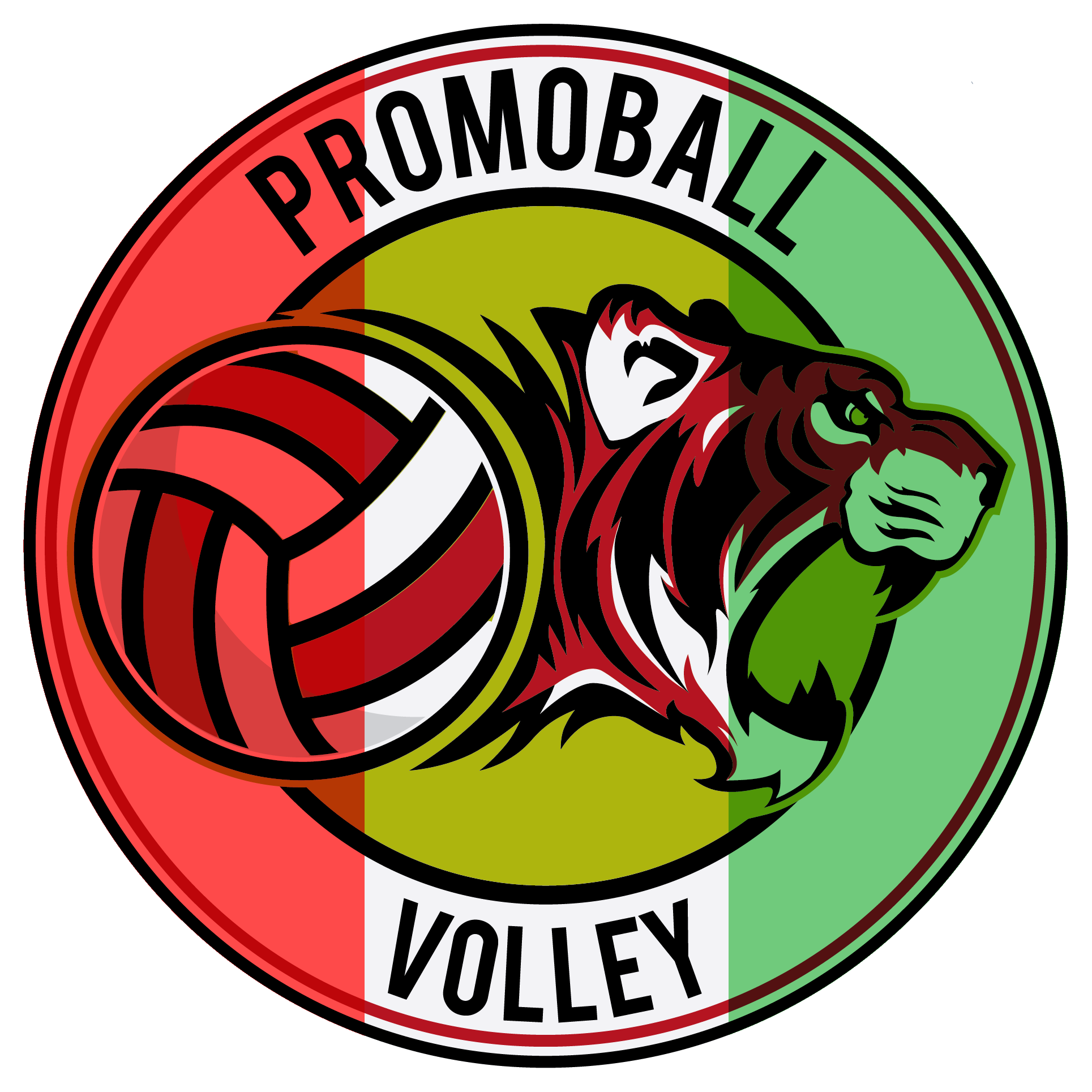 promoball nazionale