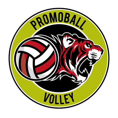 Promoball Volley verde