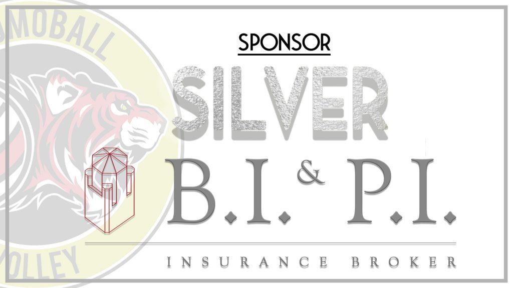BI&PI promoball sponsor strada