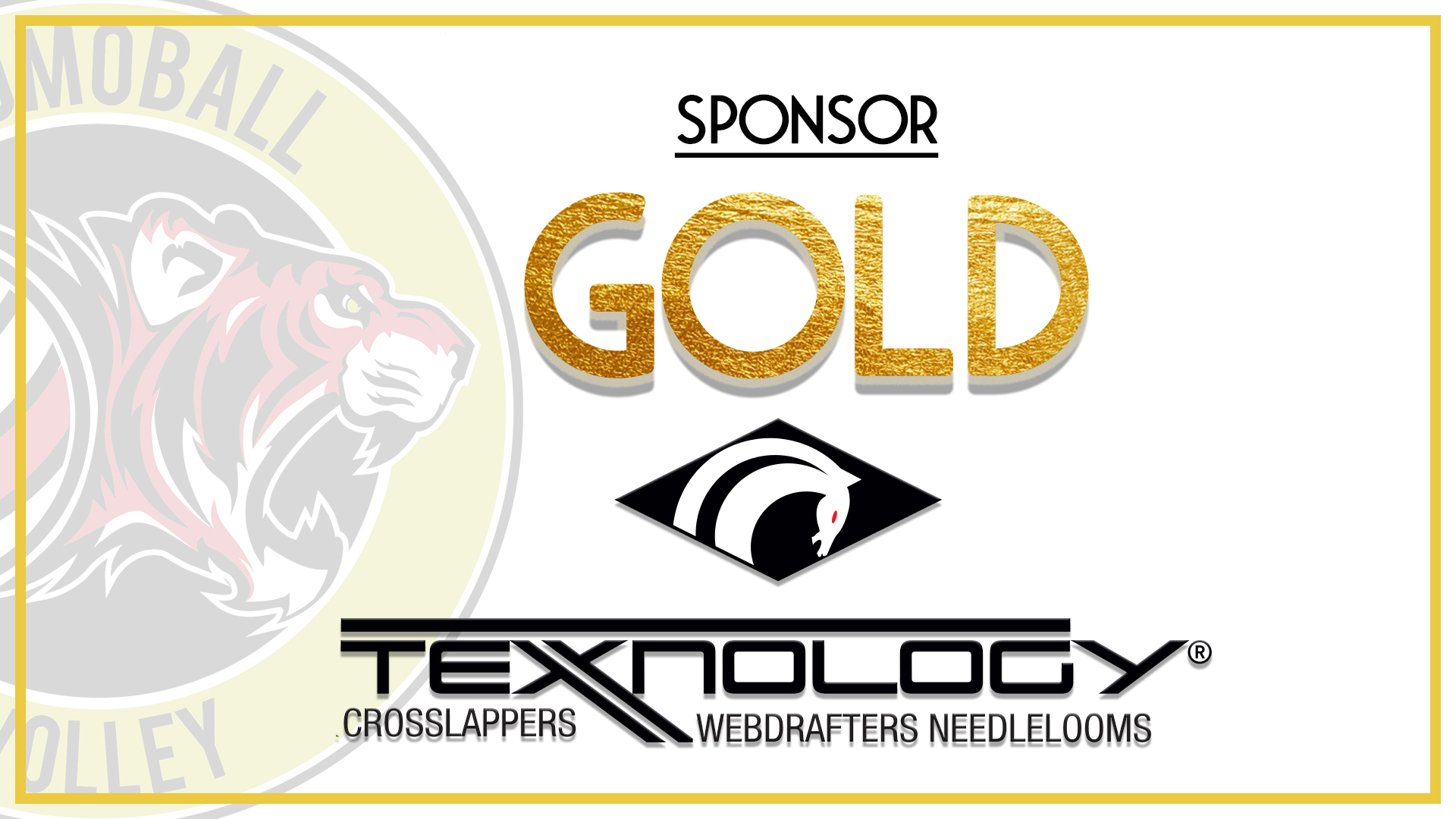 Texnology gold sponsor a fianco di Promoball
